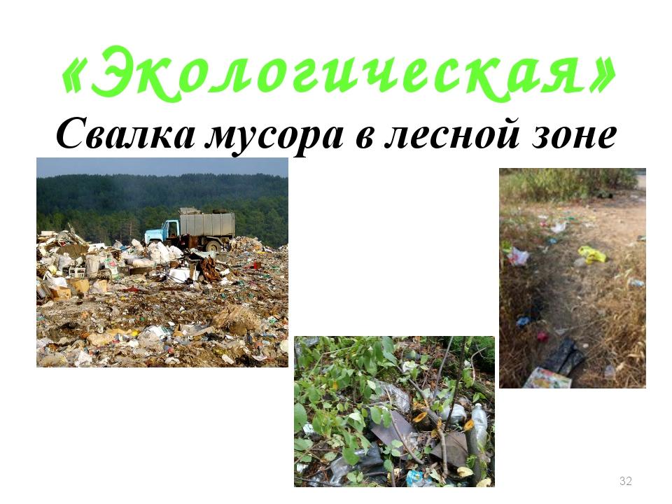 «Экологическая» Свалка мусора в лесной зоне *