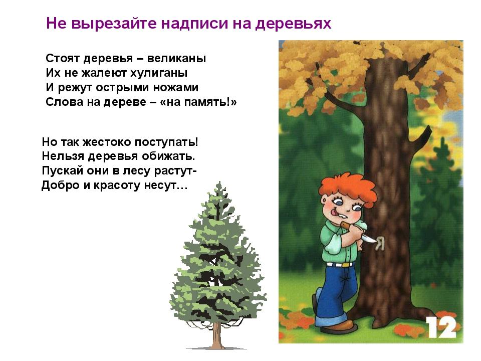 Не вырезайте надписи на деревьях Стоят деревья – великаны Их не жалеют хулиг...