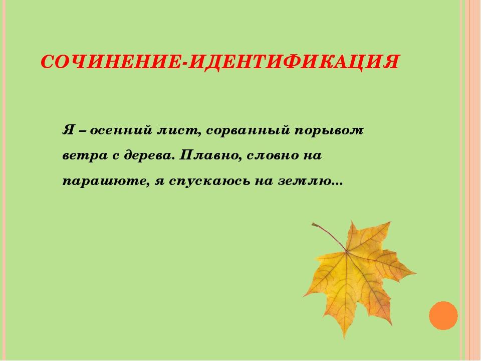 СОЧИНЕНИЕ-ИДЕНТИФИКАЦИЯ Я – осенний лист, сорванный порывом ветра с дерева. П...