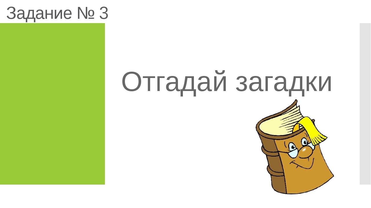 Задание № 3 Отгадай загадки