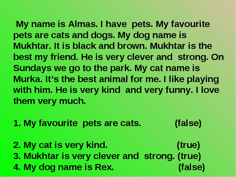 My name is Almas. I have pets. My favourite pets are cats and dogs. My dog n...
