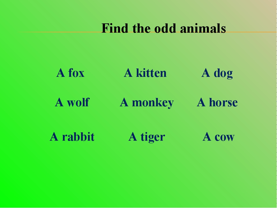 Find the odd animals A fox 	 A kitten 	 A dog A wolf	 A monkey	 A horse A rab...