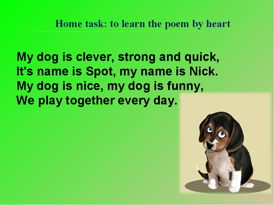 Home task: to learn the poem by heart My dog is clever, strong and quick, It'...
