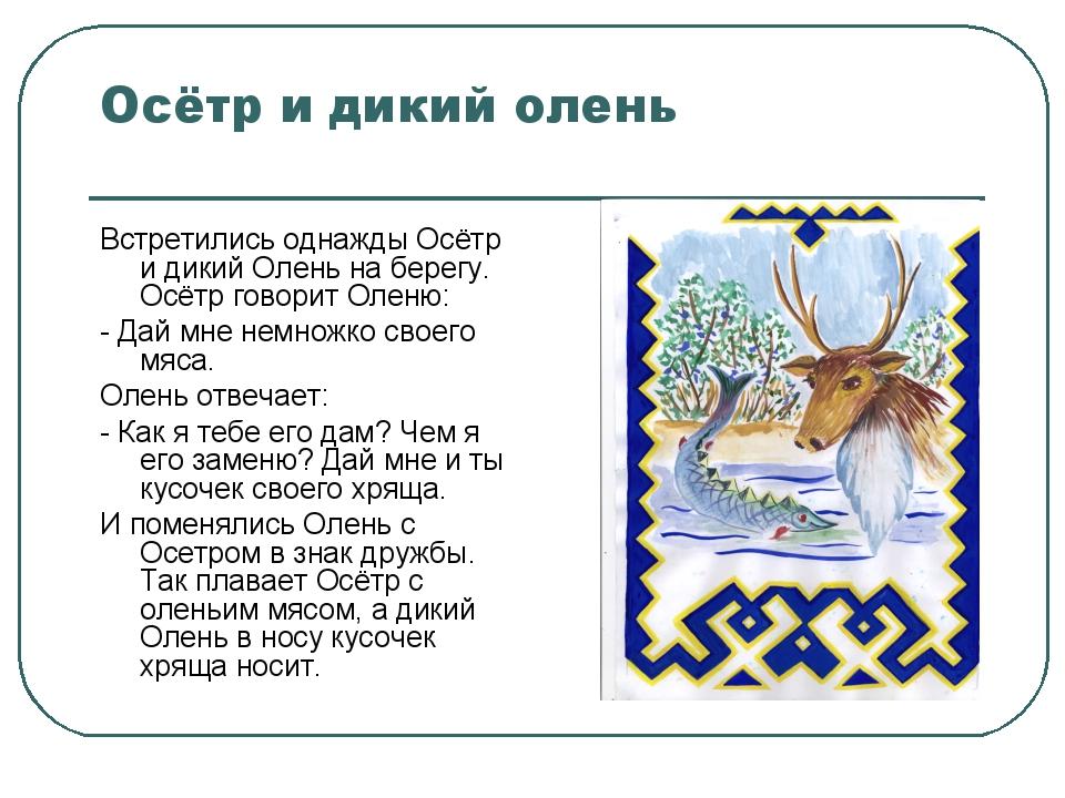 Осётр и дикий олень Встретились однажды Осётр и дикий Олень на берегу. Осётр...
