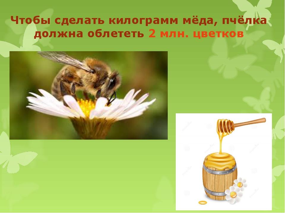 Чтобы сделать килограмм мёда, пчёлка должна облететь 2 млн. цветков