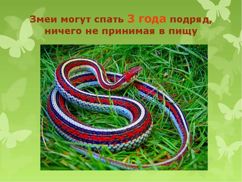 Змеи могут спать 3 года подряд, ничего не принимая в пищу