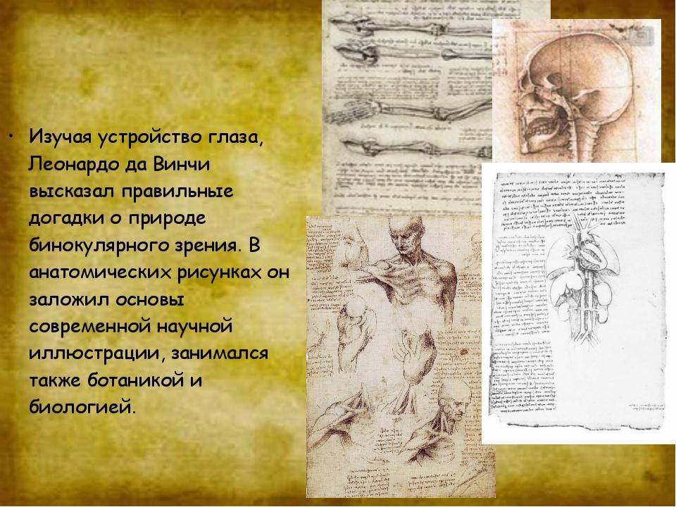 Изучая устройство глаза, Леонардо да Винчи высказал правильные догадки о прир...