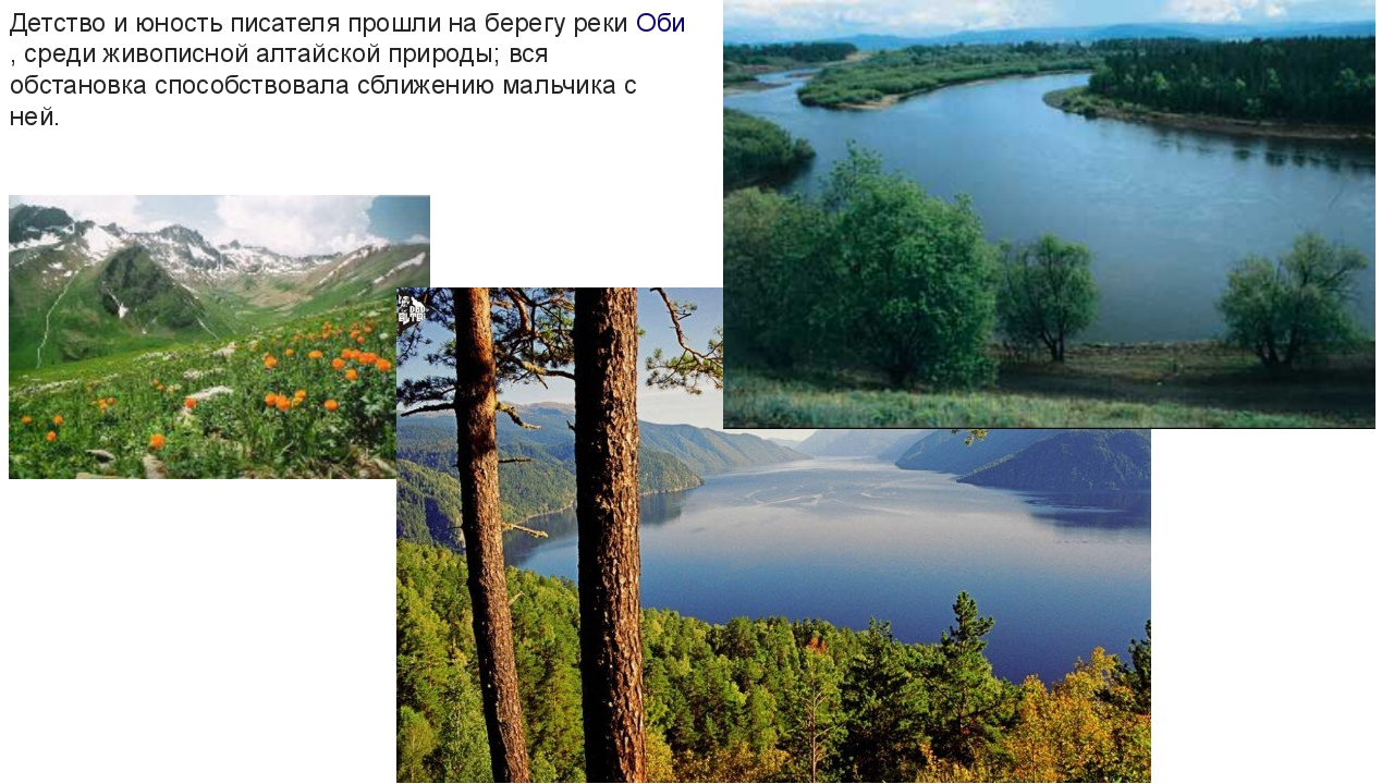 Детство и юность писателя прошли на берегу рекиОби, среди живописной алтайск...