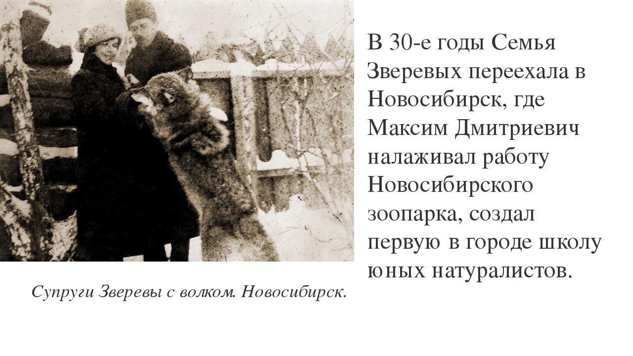 В 30-е годы Семья Зверевых переехала в Новосибирск, где Максим Дмитриевич нал...