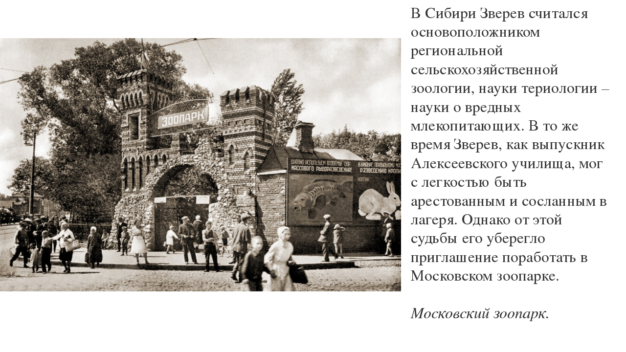 В Сибири Зверев считался основоположником региональной сельскохозяйственной з...