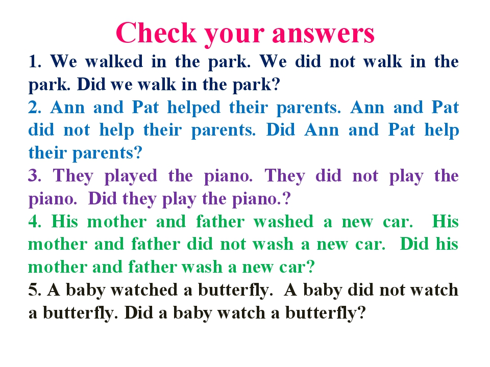 Сheck your answers 1. We walked in the park. We did not walk in the park. Did...