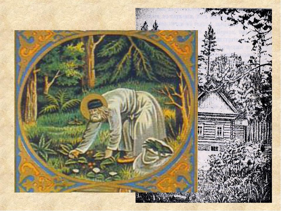 1794 г. Серафим удалился в лесную келью