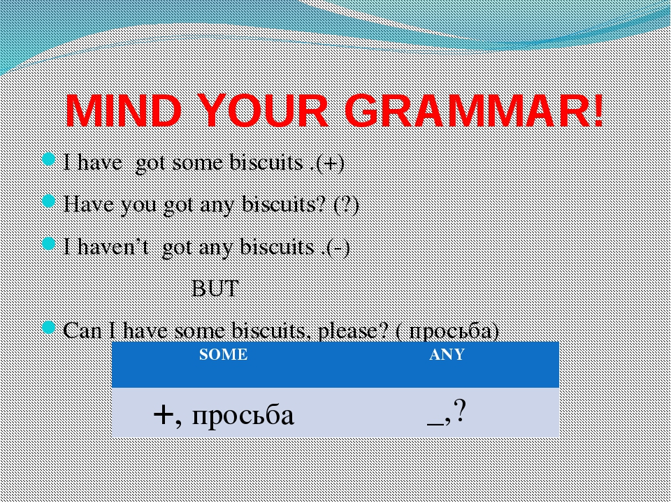 MIND YOUR GRAMMAR! I have got some biscuits .(+) Have you got any biscuits? (...