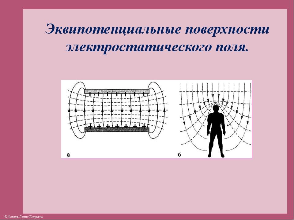 Эквипотенциальные поверхности электростатического поля. © Фокина Лидия Петровна
