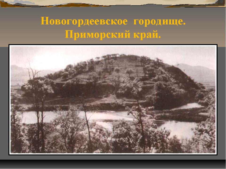 Новогордеевское городище. Приморский край.