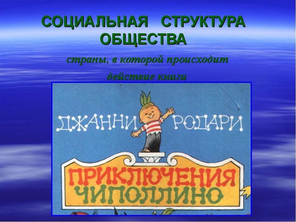 СОЦИАЛЬНАЯ СТРУКТУРА ОБЩЕСТВА страны, в которой происходит действие книги