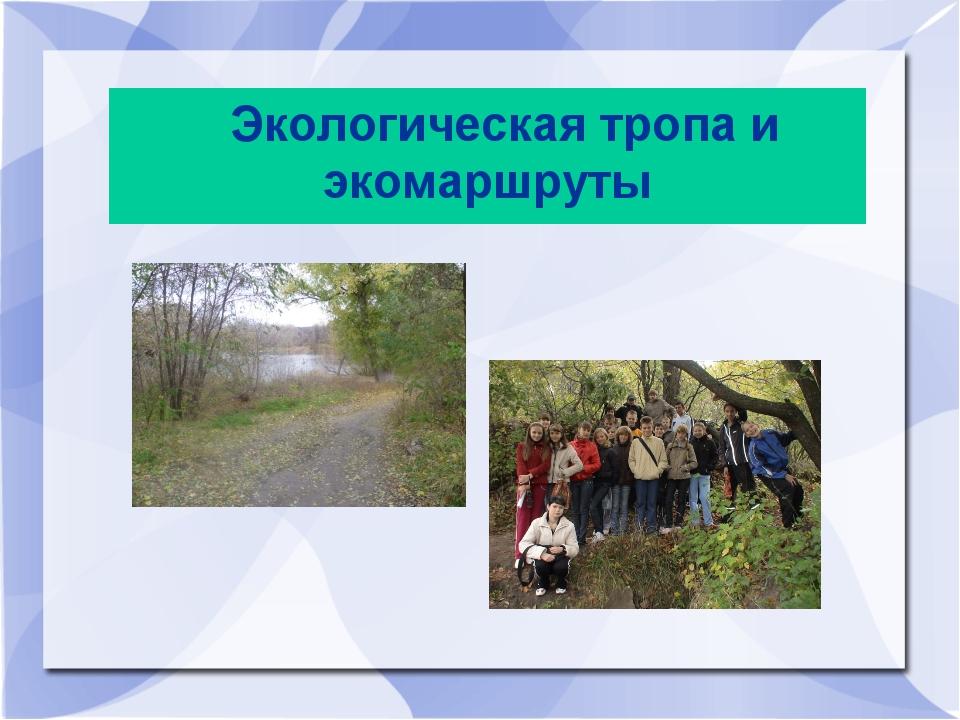 Экологическая тропа и экомаршруты
