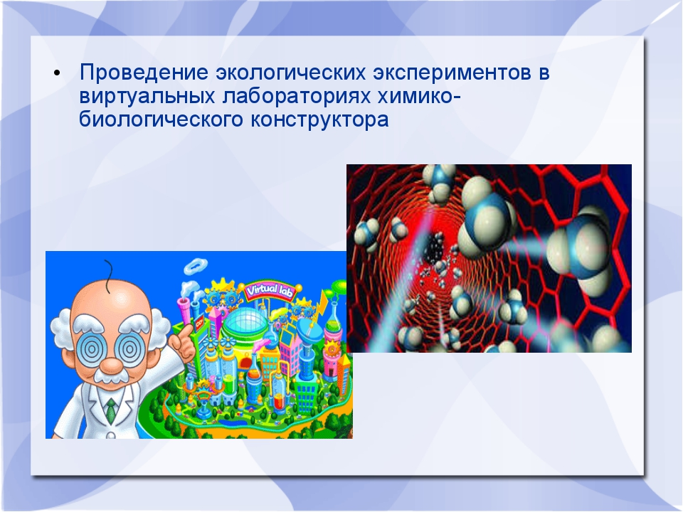 Проведение экологических экспериментов в виртуальных лабораториях химико-биол...