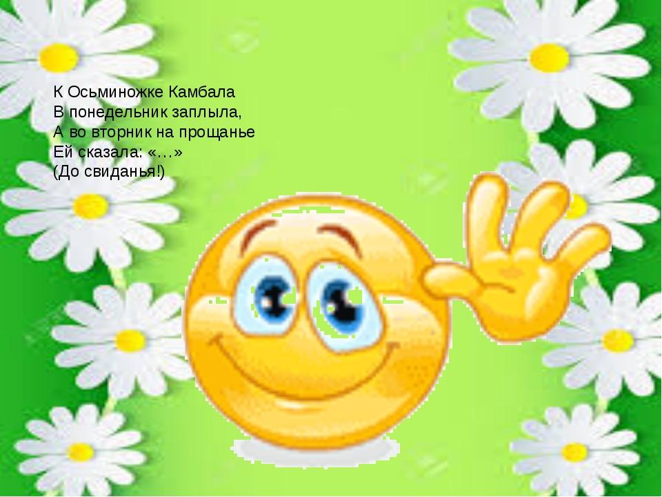 К Осьминожке Камбала В понедельник заплыла, А во вторник на прощанье Ей сказа...