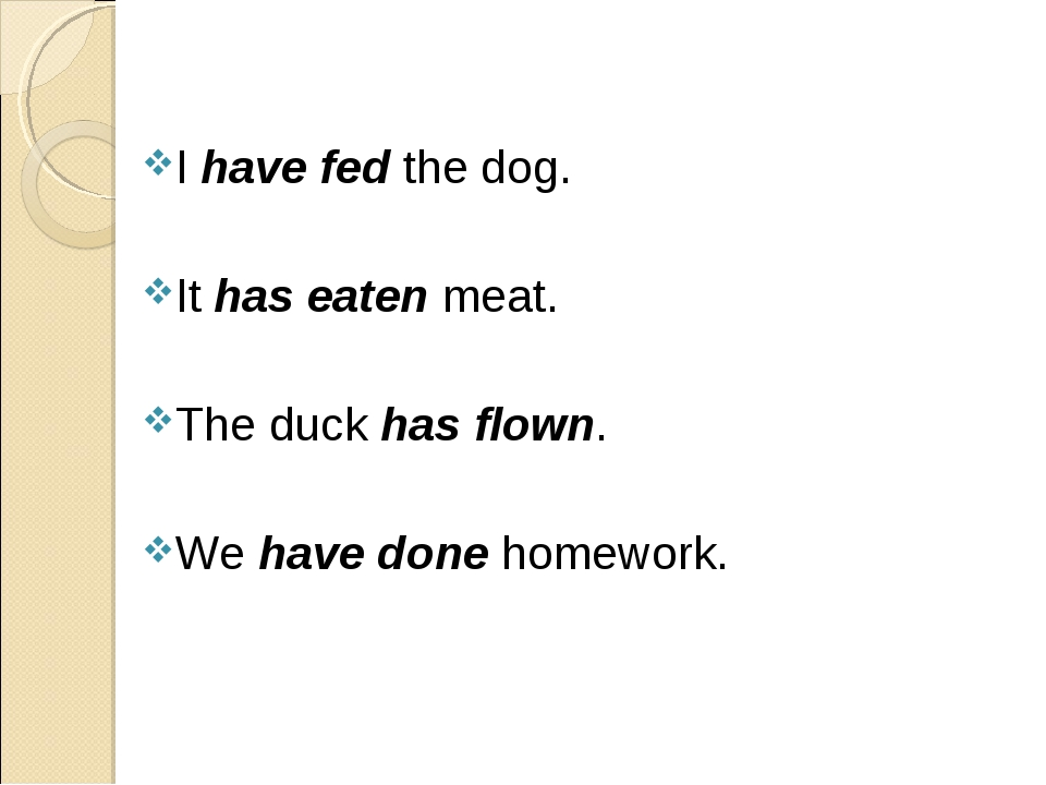 I have fed the dog. It has eaten meat. The duck has flown. We have done homew...