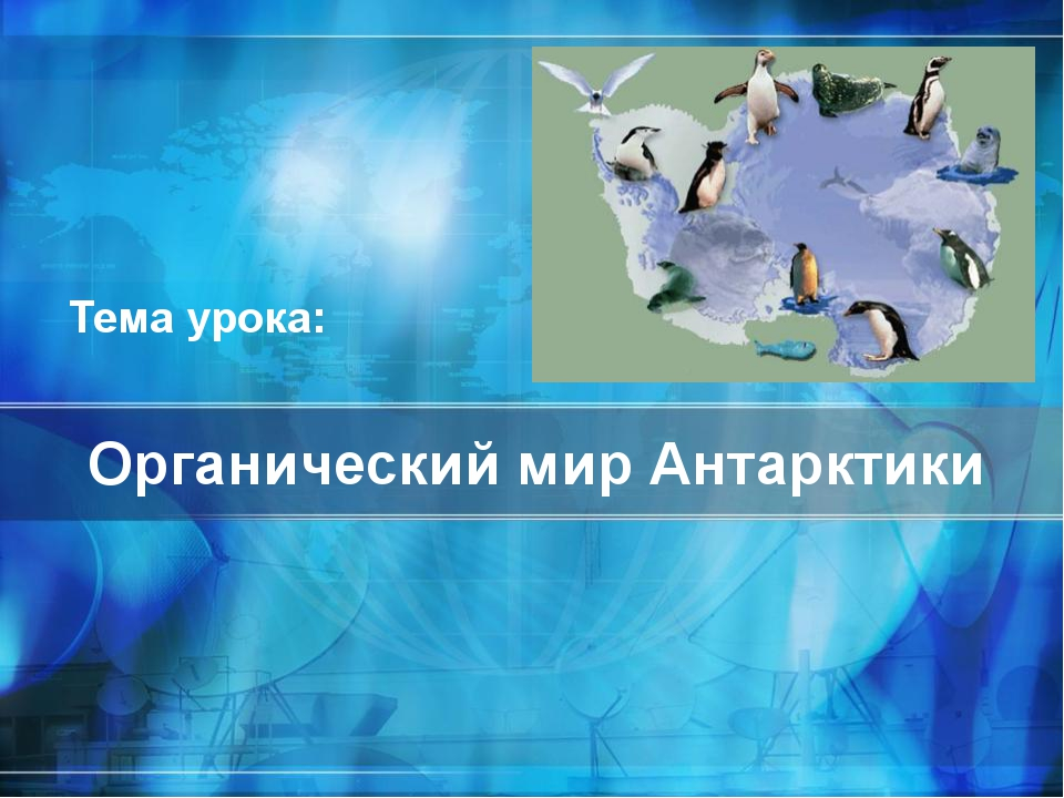 Органический мир Антарктики Тема урока: