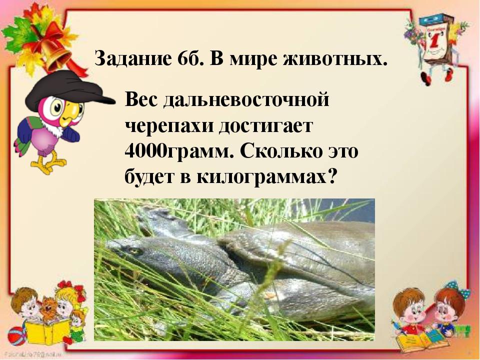 Задание 6б. В мире животных. Вес дальневосточной черепахи достигает 4000грам...