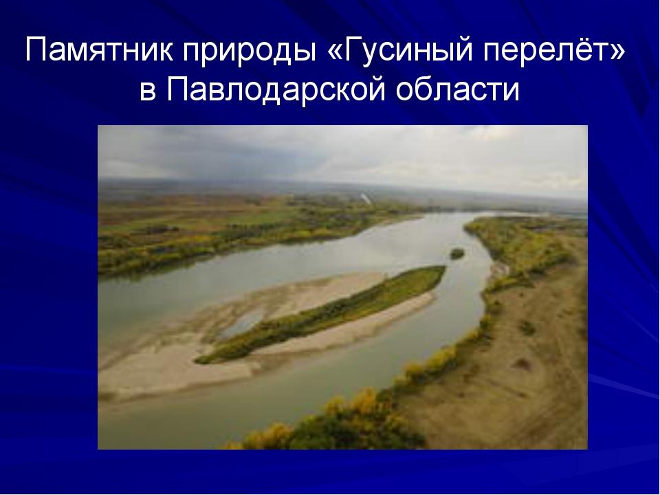 Памятник природы «Гусиный перелёт» в Павлодарской области