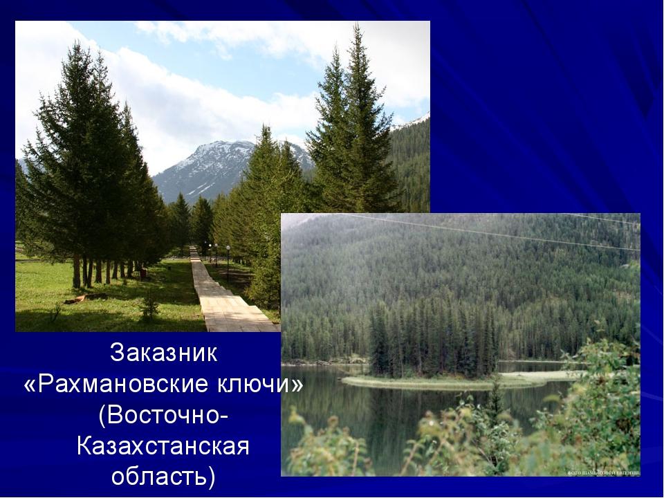 Заказник «Рахмановские ключи» (Восточно-Казахстанская область)