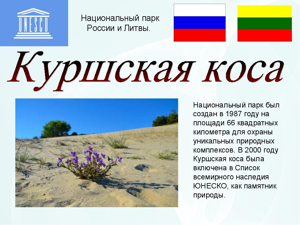 Национальный парк России и Литвы. Национальный парк был создан в 1987 году на...