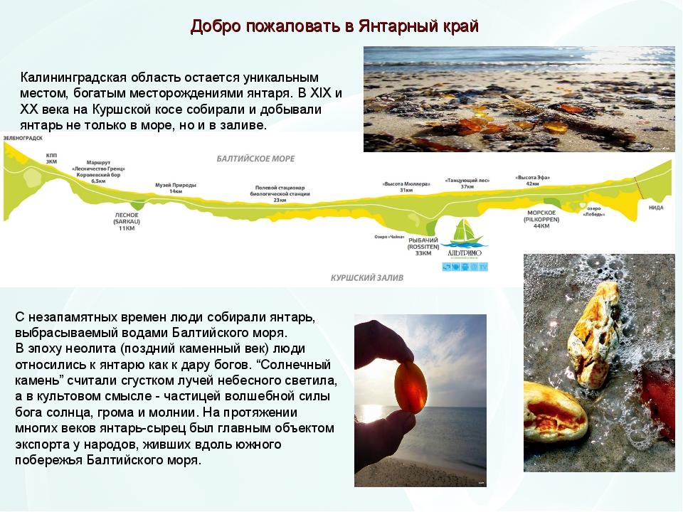 Калининградская область остается уникальным местом, богатым месторождениями я...