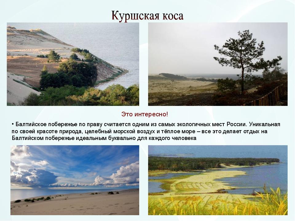 Балтийское побережье по праву считается одним из самых экологичных мест Росс...