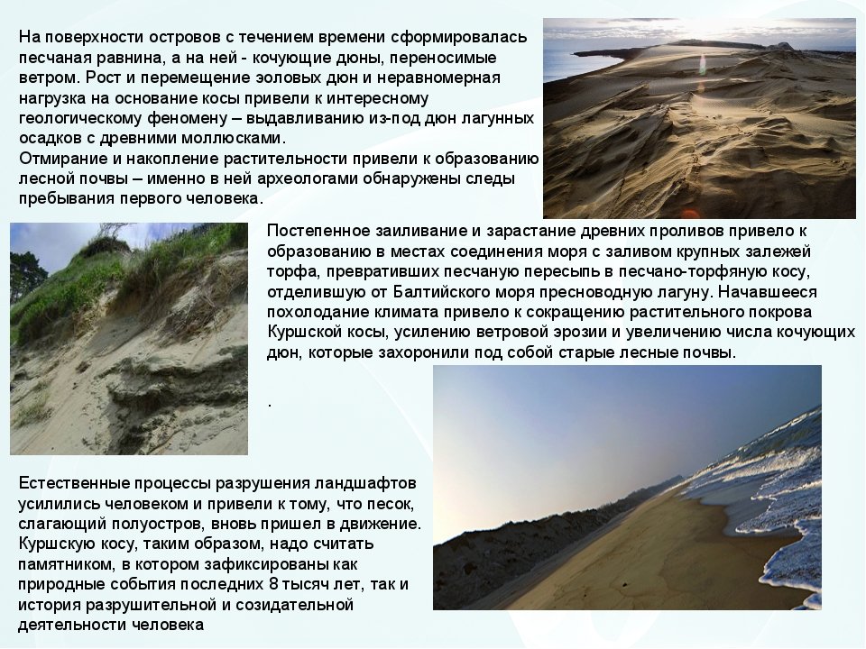 На поверхности островов с течением времени сформировалась песчаная равнина, а...