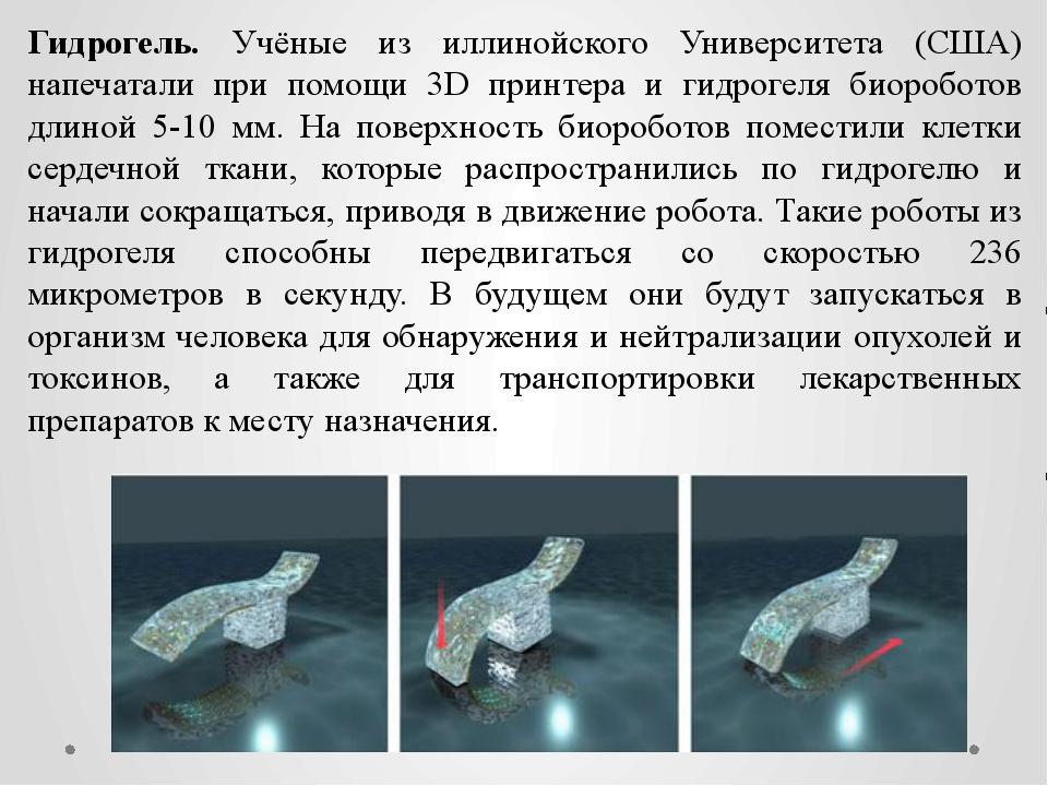 Гидрогель. Учёные из иллинойского Университета (США) напечатали при помощи 3D...