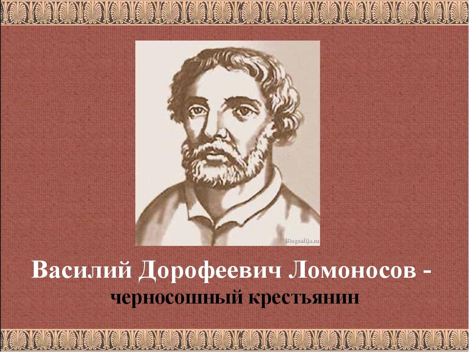 Василий Дорофеевич Ломоносов - черносошный крестьянин