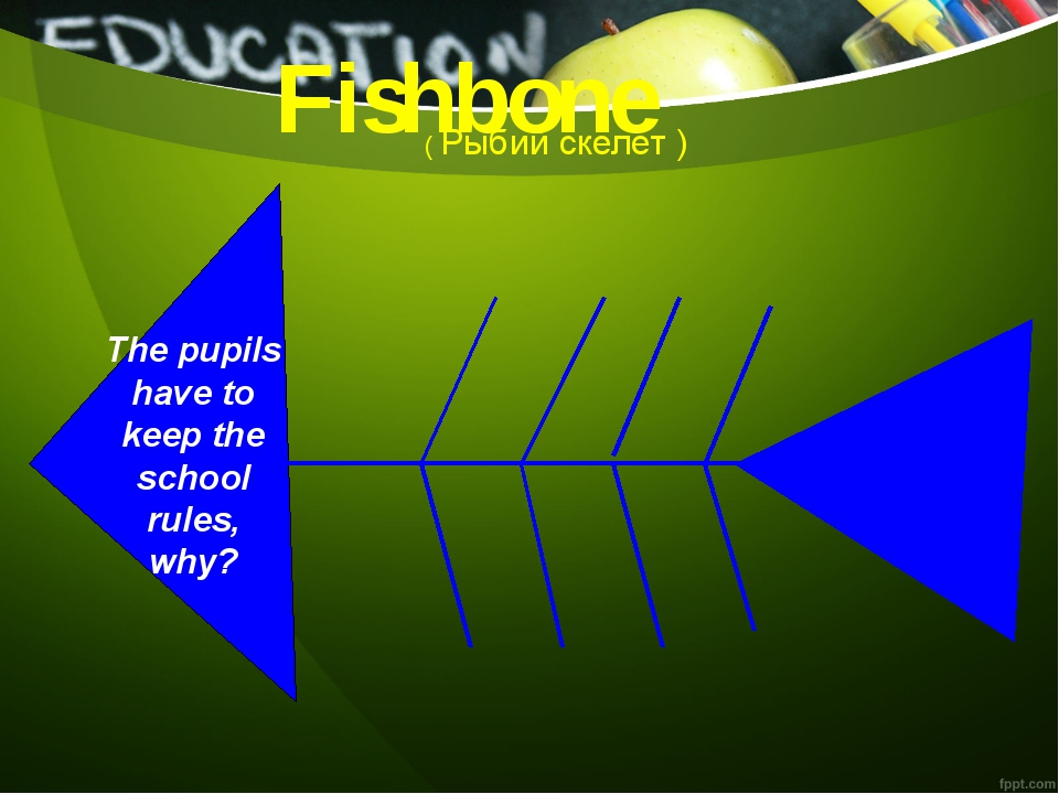 The pupils have to keep the school rules, why? ( Рыбий скелет ) Fishbone