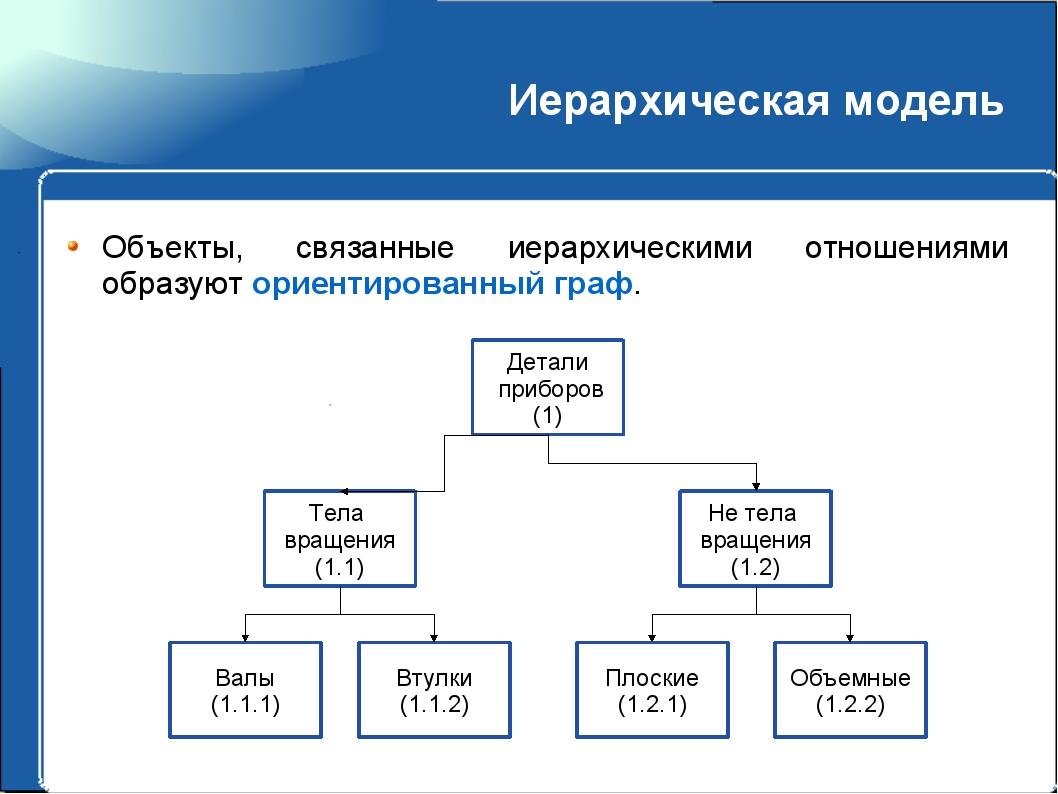 Иерархическая модель Объекты, связанные иерархическими отношениями образуют о...