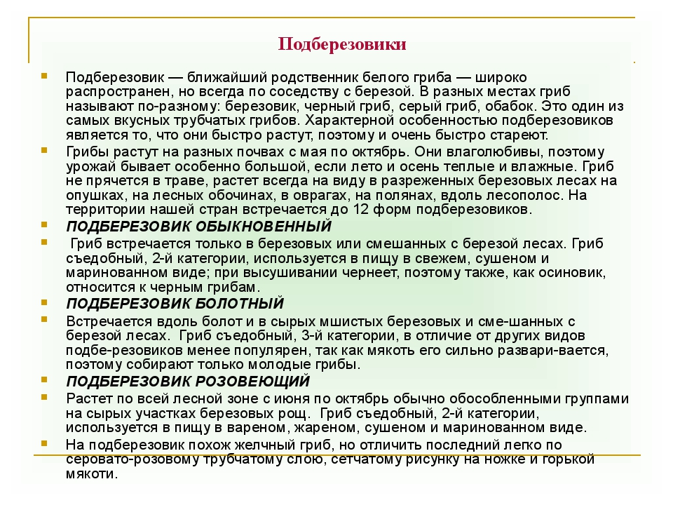 Подберезовики Подберезовик — ближайший родственник белого гриба — широко расп...