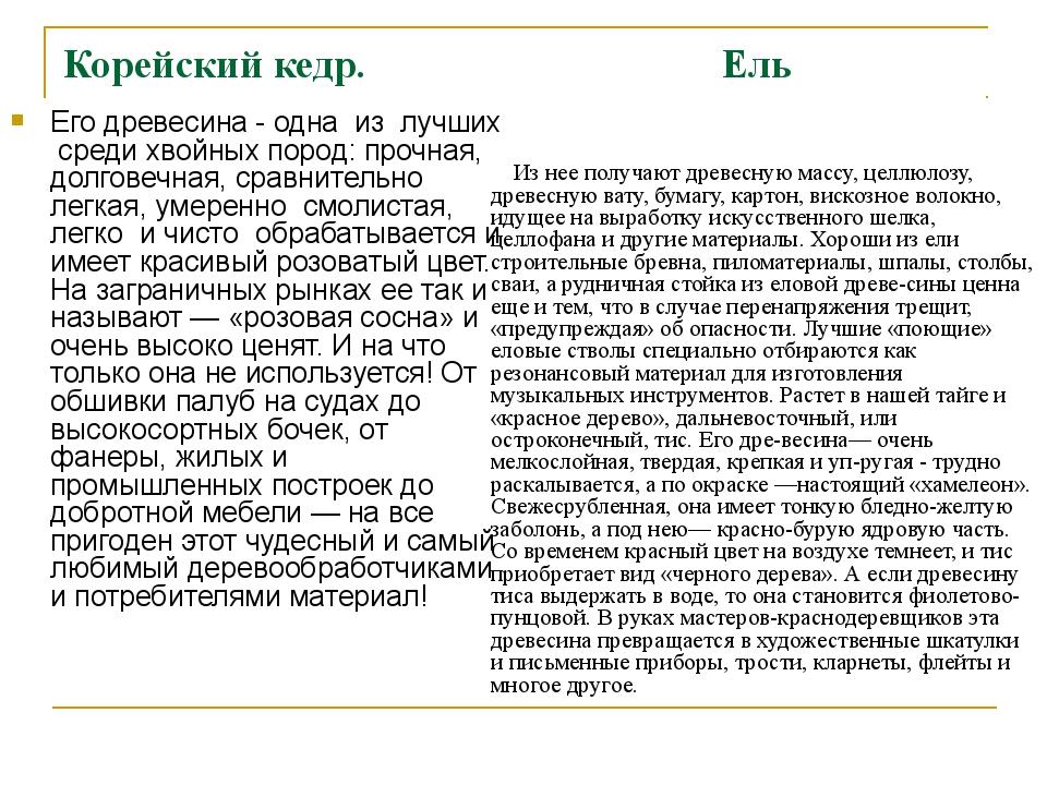 Корейский кедр. Ель Его древесина - одна из лучших среди хвойных пород: прочн...