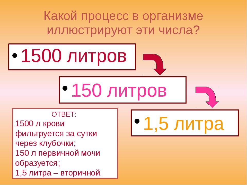 Какой процесс в организме иллюстрируют эти числа? 1500 литров 150 литров 1,5...