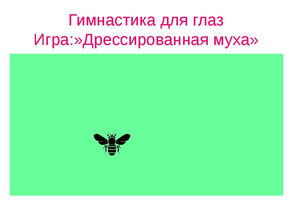 Гимнастика для глаз Игра:»Дрессированная муха»