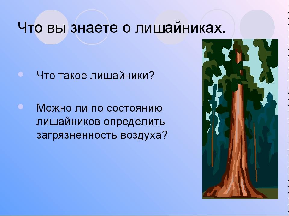 Что вы знаете о лишайниках. Что такое лишайники? Можно ли по состоянию лишайн...