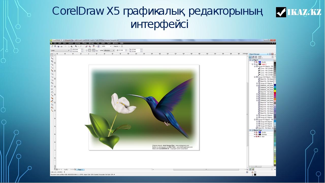CorelDraw X5 графикалық редакторының интерфейсі