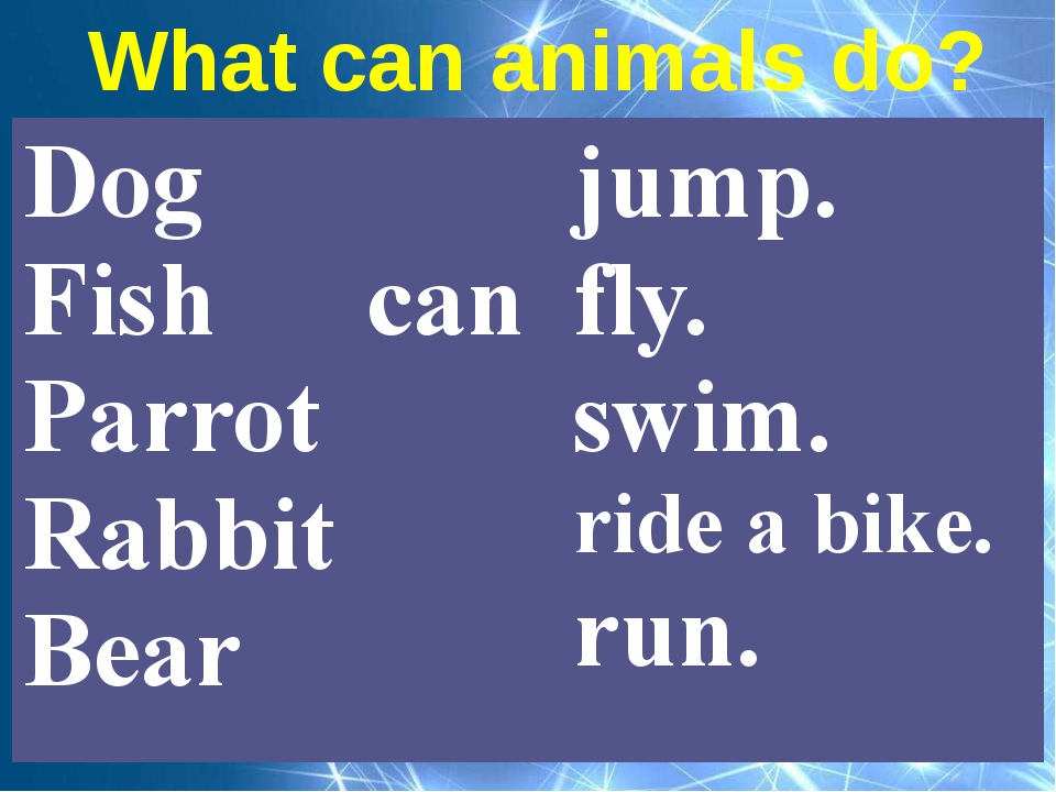 What can animals do? Dog Fish Parrot Rabbit Bear can jump. fly. swim. ridea b...