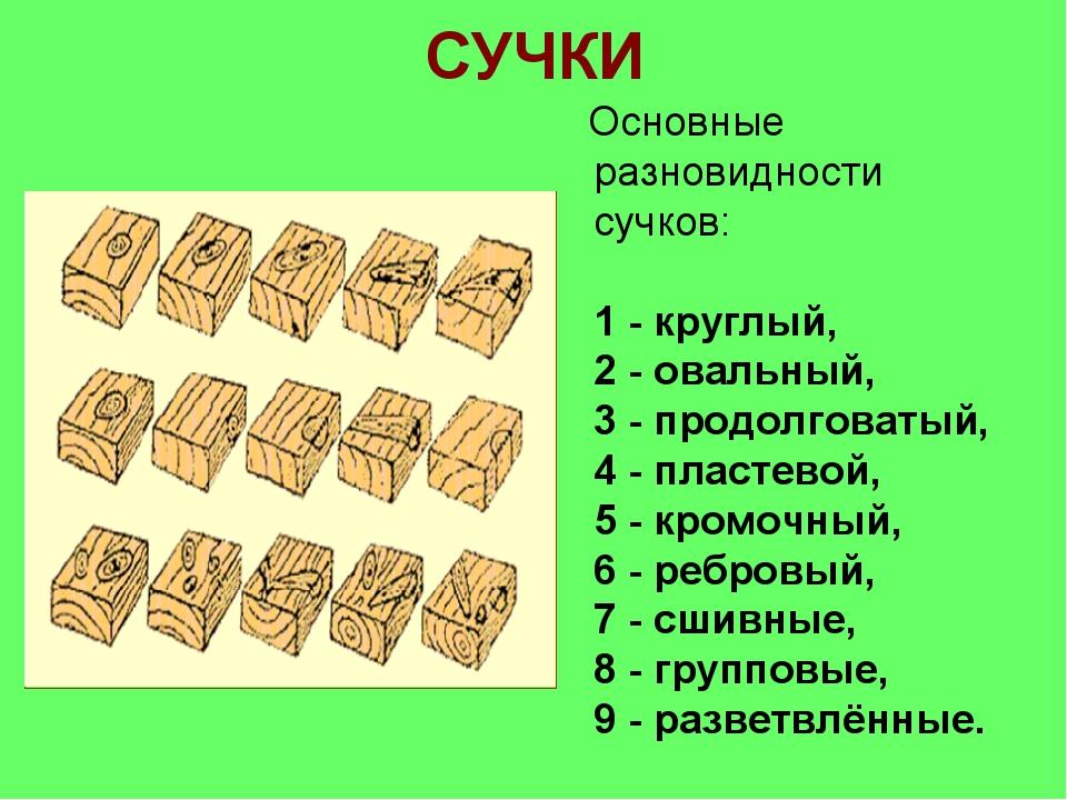 СУЧКИ Основные разновидности сучков: 1 - круглый, 2 - овальный, 3 - продолгов...
