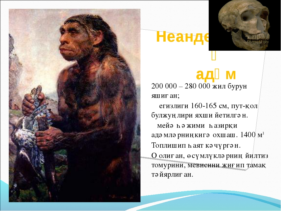 Неандертальлиқ адәм 200 000 – 280 000 жил бурун яшиған; егизлиги 160-165 см,...
