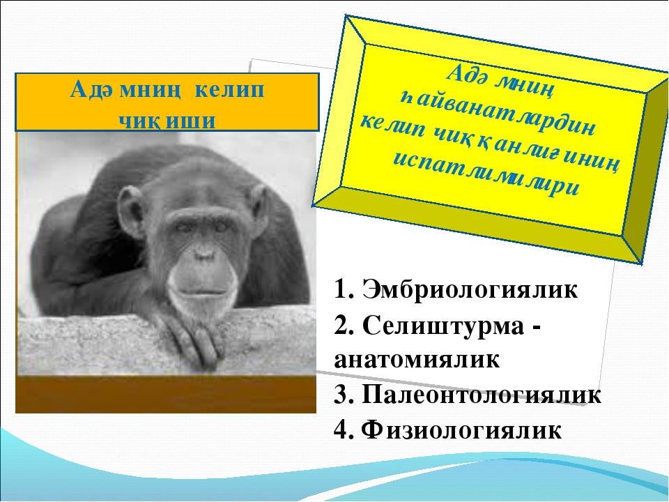 1. Эмбриологиялик 2. Селиштурма - анатомиялик 3. Палеонтологиялик 4. Физиолог...