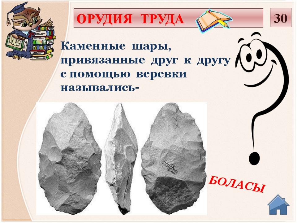 Галька,кварцит,яшма,сланец,обсидиан,нефрит Для изготовления орудий труда были...