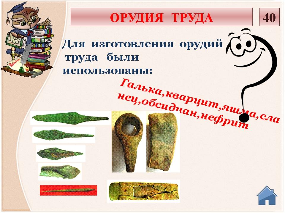 Острые наконечники копий,стрел; иглы и гарпуны Из кости и рогов стали делать:...