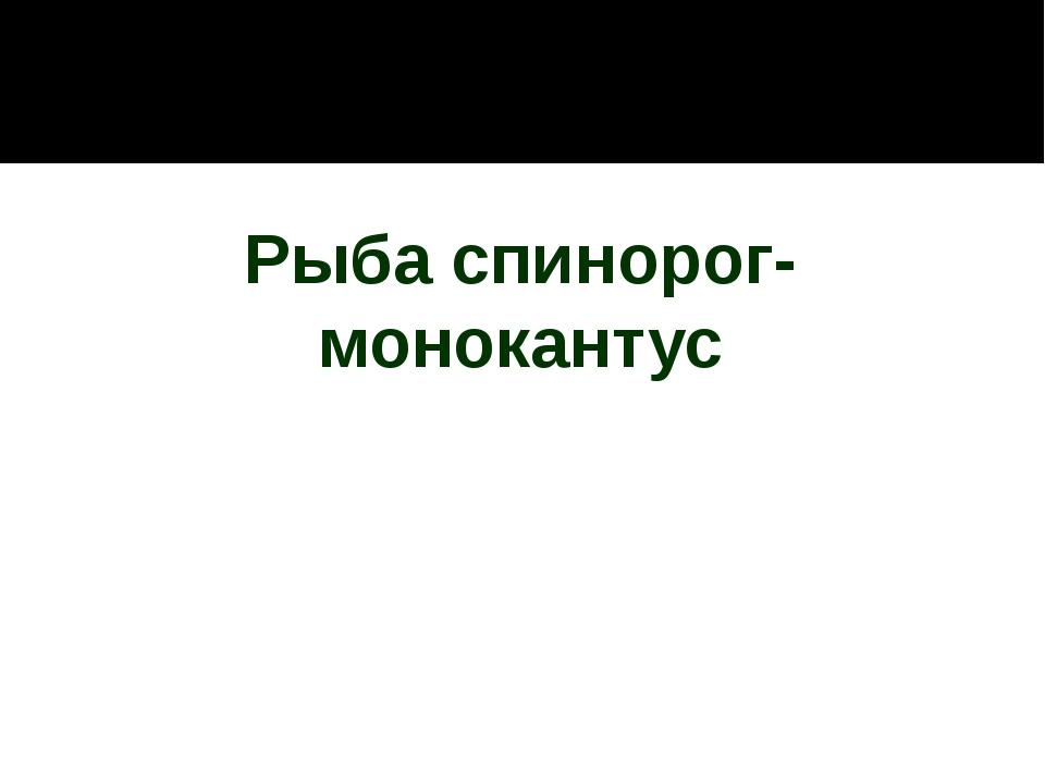 Рыба спинорог-монокантус