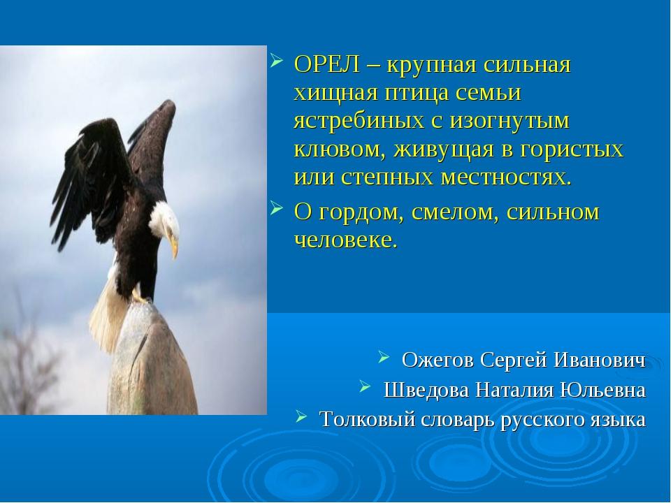 ОРЕЛ – крупная сильная хищная птица семьи ястребиных с изогнутым клювом, живу...